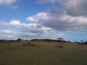 青い空と草原