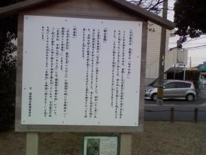 ねずの木に関する説明看板