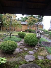 庭 奥に広い。石あり。木あり。芝生あり。