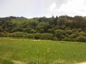 畑の向こうに山