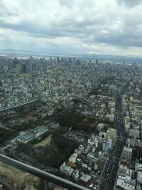 あべのハルカスから北方向 ビル群の向こうに大阪駅のタワー